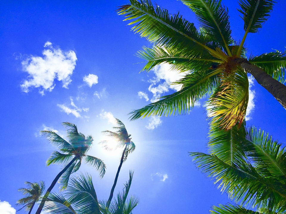 Discount Hawaii Tours For Groups Hawaii Discount - Discount hawaii