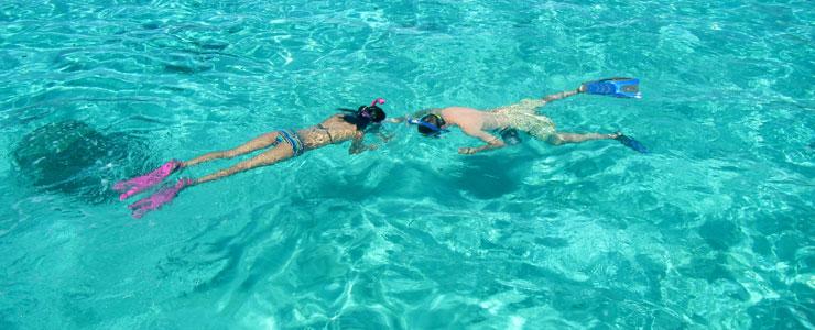 https://www.hawaiidiscount.com/Portals/0/hawaii-snorkeling-cat.jpg