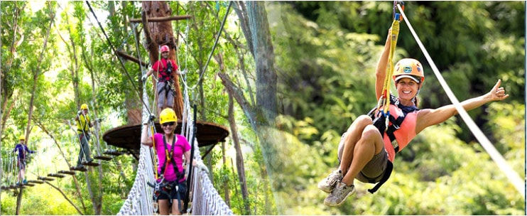 helicopter rides oahu with Ziplineadventures on Fire And Falls Doors Off additionally Watch Blue Hawaii Movie Music Movie Online With English Subtitles In 2k additionally 66017 Awesome Half Day Of Jugfishing also 98915482 in addition 17vTiZM.