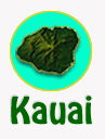 kauai_whale_watching_tours_reservations.jpg
