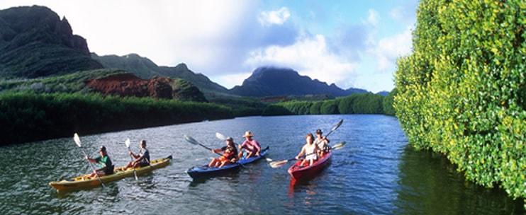 Kayak kauai discount coupon