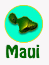 maui_whale_watching_tours_reservations.jpg