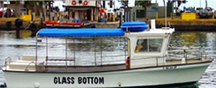 Sashimi glass bottom boat tour oahu hawaii discount for Bottom fishing oahu