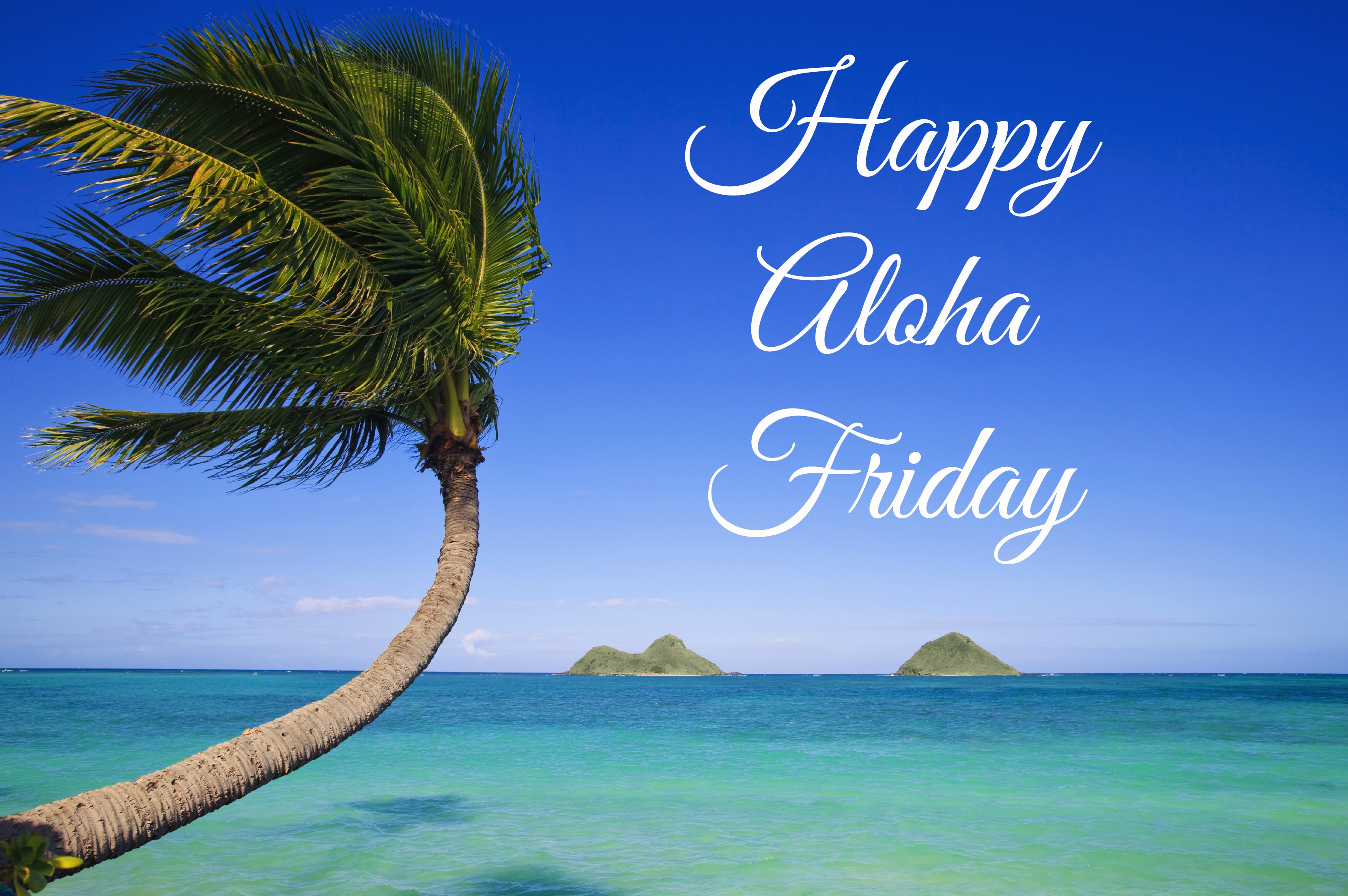 Happy Aloha Friday The Origin Of Aloha Friday