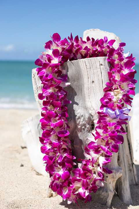 Our Most Lavish Lei With Three Times The Amount Of Flowers Compared To Standard